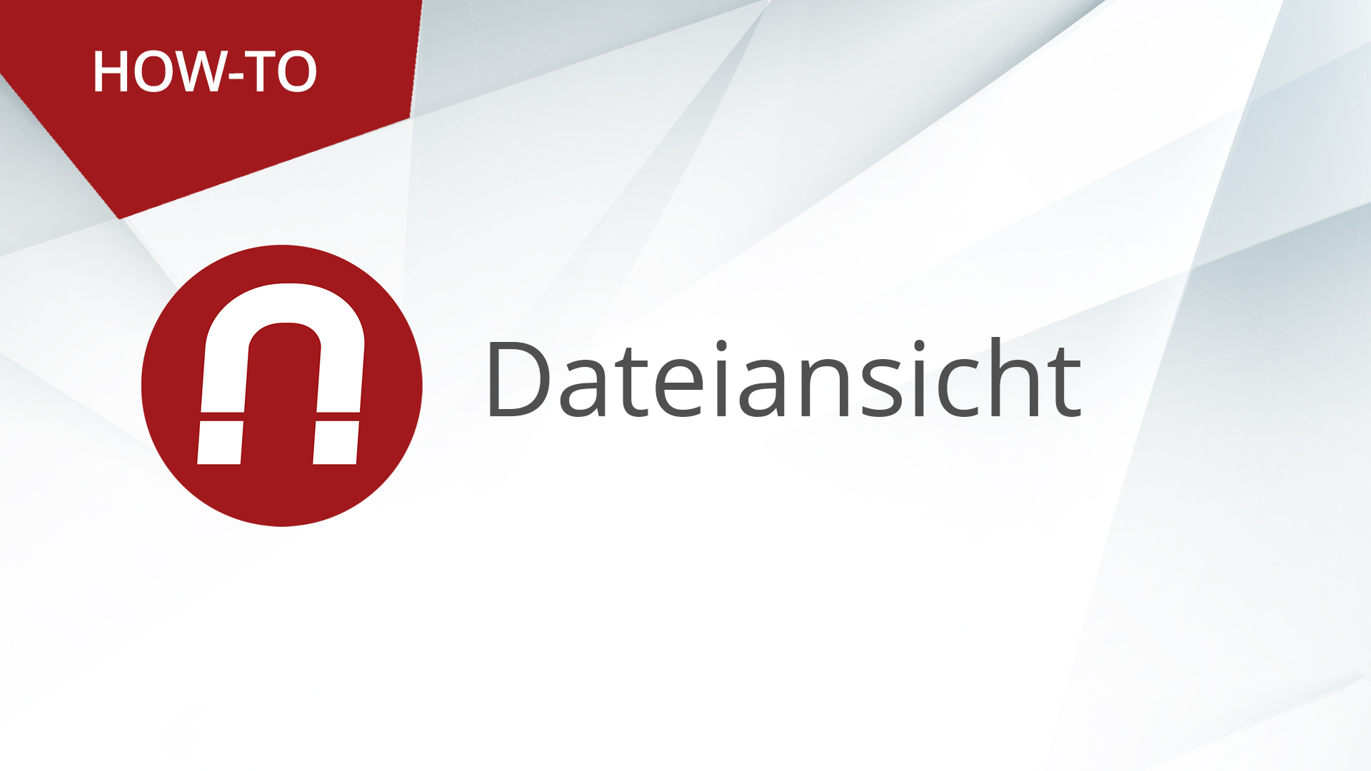 How-To: AMAGNO Basics – Dateiansichten