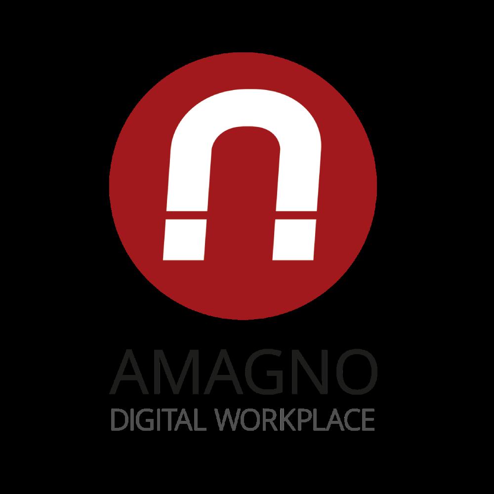 interface amagno logo tr - Schnittstellen
